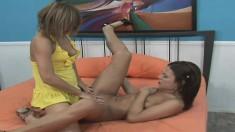 Alyssa Reece begs her girlfriend to play with her mazing cunt