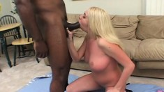 Hot blonde gobbles up his black bone and gets her twat humped
