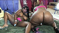 Oiled up ebony lesbians with massive booties cum side by side
