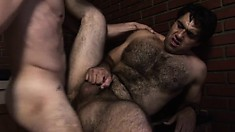 Hairy dude gets his buddy's fat cock deep into his mouth and ass