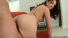 Sweet brunette slut, after sucking cock gets banged in doggy style position