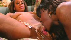 Two caramel beauties taste each other's cunts and share a white dick