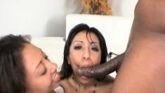 Alexa Cruz and Leslie Sierraenjoy lesbian sex and share a black stick
