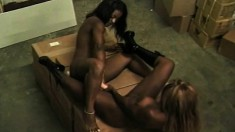 Big breasted black lesbians use a double-ended dildo to find pleasure