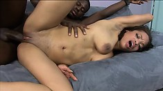 Nubile ebony babe Victory Phoenix gets joined with a giant black stick