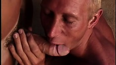 Mature gay studs delight in dick eating and slippery ass hammering