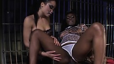 Fair and tasty babes Simone and Jada Fire eat ferocious beaver-cleaver