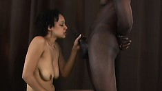 Hot ebony babe with a perky ass offers her black lover a great blowjob