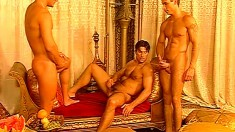 Filthy pervo likes seeing his partner banged by another male