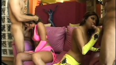 A couple of horny bitches have group sex getting nailed in a foursome
